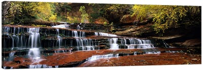 Waterfall in a forest, North Creek, Zion National Park, Utah, USA Canvas Art Print