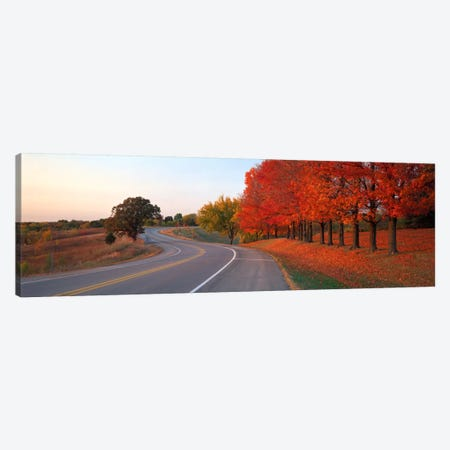 Fall Road IL Canvas Print #PIM587} by Panoramic Images Canvas Art