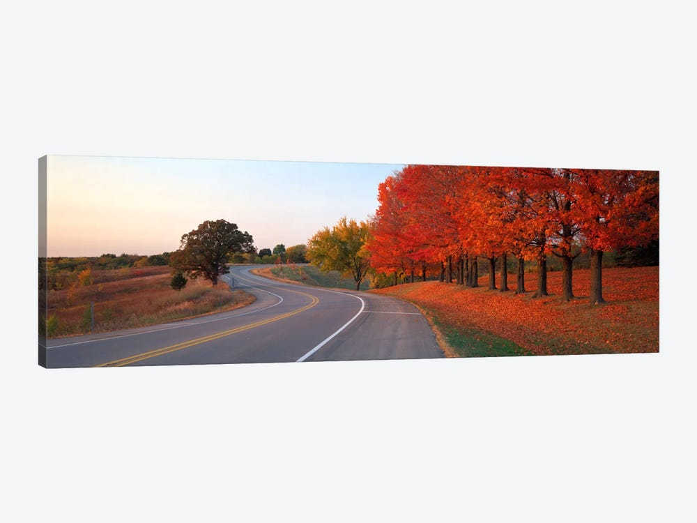 Fall Road IL by Panoramic Images 1-piece Canvas Art Print