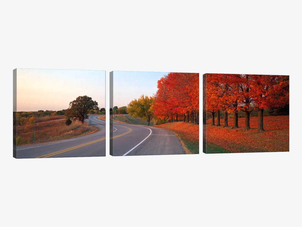 Fall Road IL by Panoramic Images 3-piece Canvas Art Print