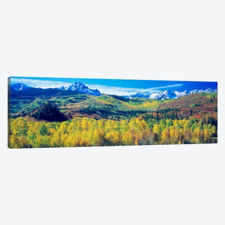 Mountain Landscape, San Juan Mountains, Colorado, USA Canvas Print #PIM588} by Panoramic Images Art Print