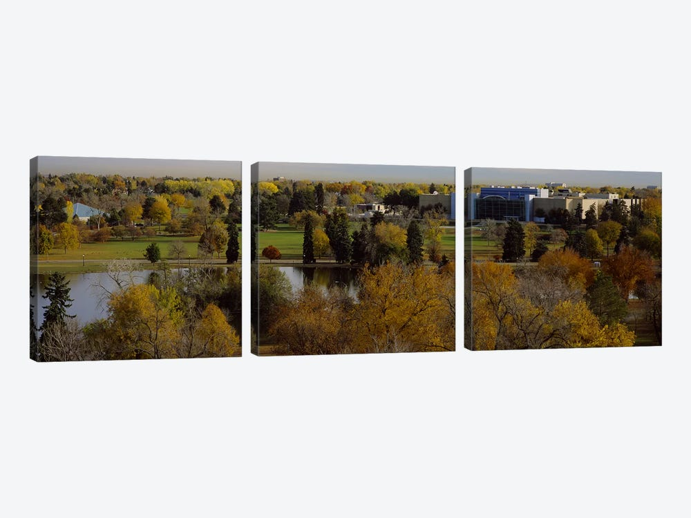 High angle view of trees, Denver, Colorado, USA by Panoramic Images 3-piece Art Print