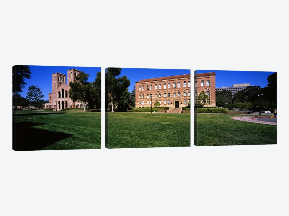Lawn in front of a Royce Hall and Haines Hall, University of California, City of Los Angeles, California, USA by Panoramic Images 3-piece Canvas Print