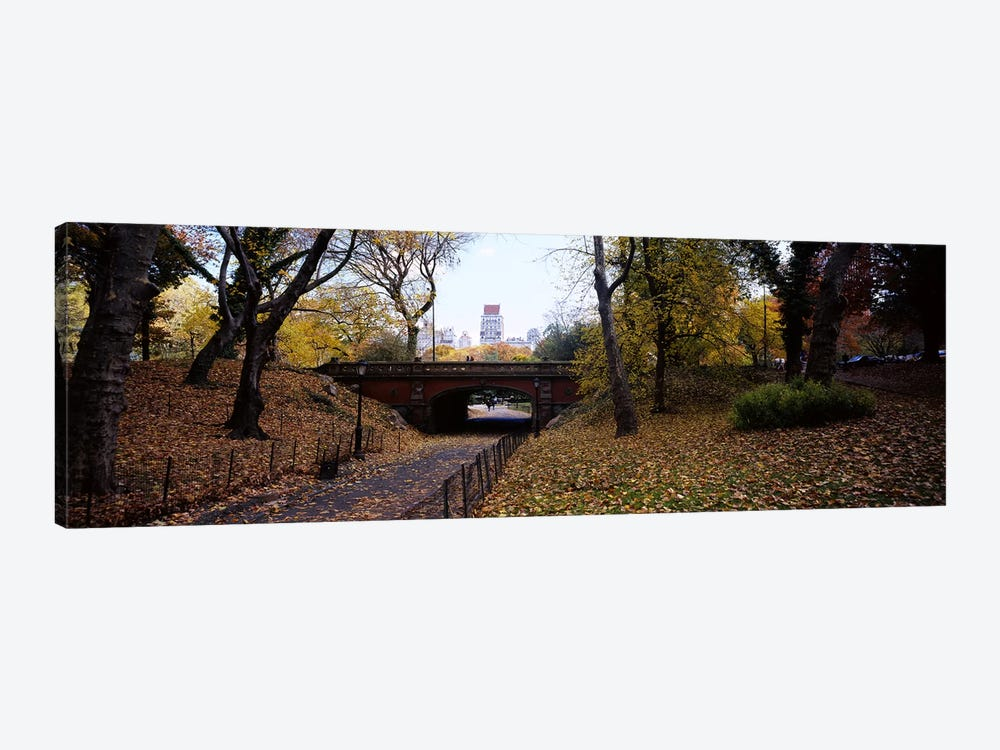 Driprock Arch, Central Park, Manhattan, New York City, New York, USA by Panoramic Images 1-piece Canvas Artwork