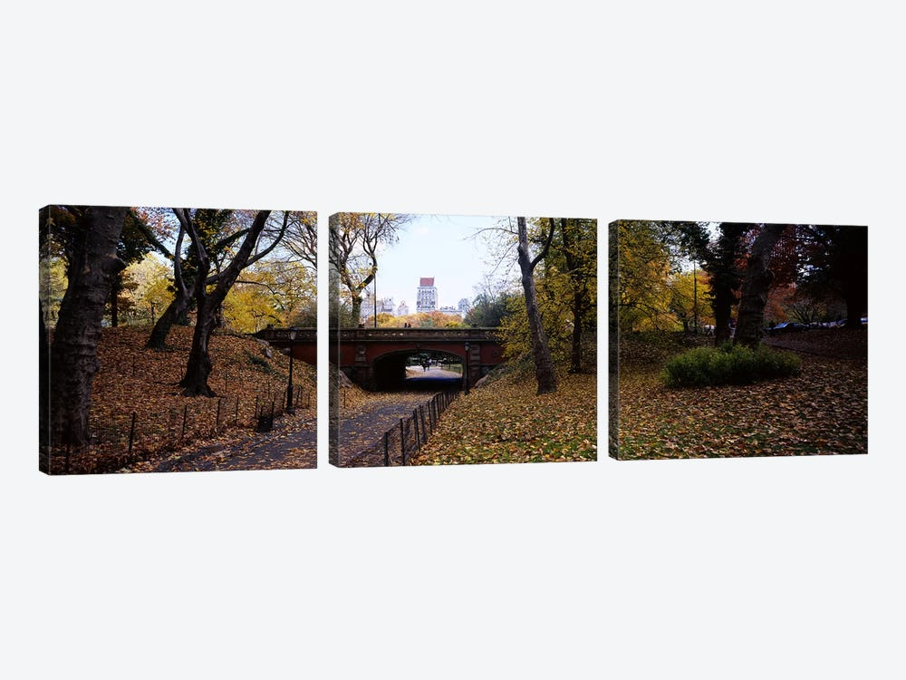 Driprock Arch, Central Park, Manhattan, New York City, New York, USA by Panoramic Images 3-piece Canvas Artwork