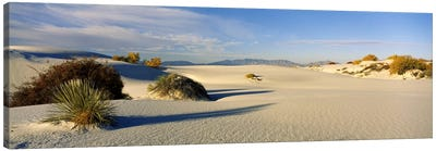 Desert Landscape, White Sands National Monument, Tularosa Basin, New Mexico, USA Canvas Art Print