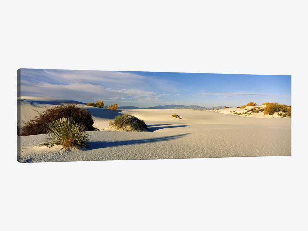 Desert Landscape, White Sands National Monument, Tularosa Basin, New Mexico, USA by Panoramic Images 1-piece Canvas Print