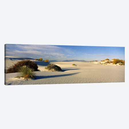 Desert Landscape, White Sands National Monument, Tularosa Basin, New Mexico, USA Canvas Print #PIM6098} by Panoramic Images Canvas Print