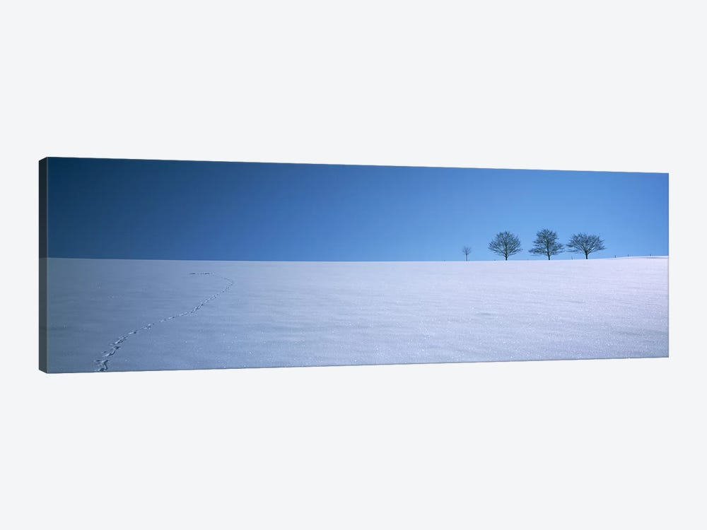Footprints on a snow covered landscape, St. Peter, Black Forest, Germany by Panoramic Images 1-piece Canvas Wall Art