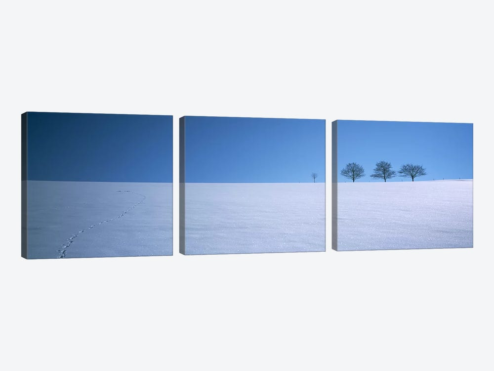 Footprints on a snow covered landscape, St. Peter, Black Forest, Germany by Panoramic Images 3-piece Canvas Artwork