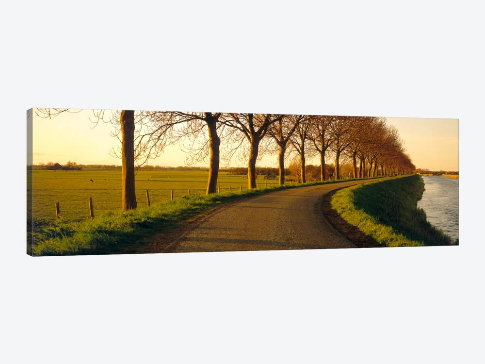 Tree-Lined Riverside Road, Noordbeemster, North Holland, Netherlands by Panoramic Images 1-piece Art Print