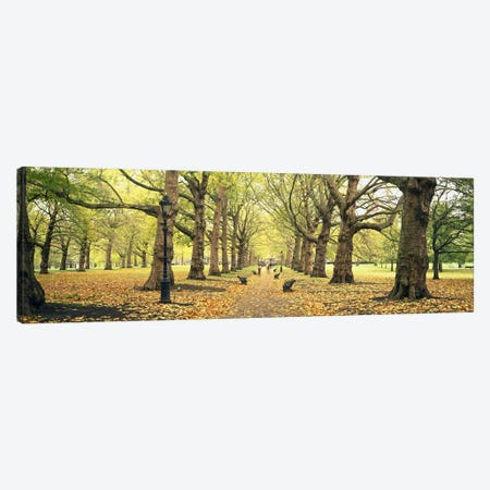 Green Park, City Of Westminster, London, England, United Kingdom Canvas Print #PIM6153} by Panoramic Images Canvas Art