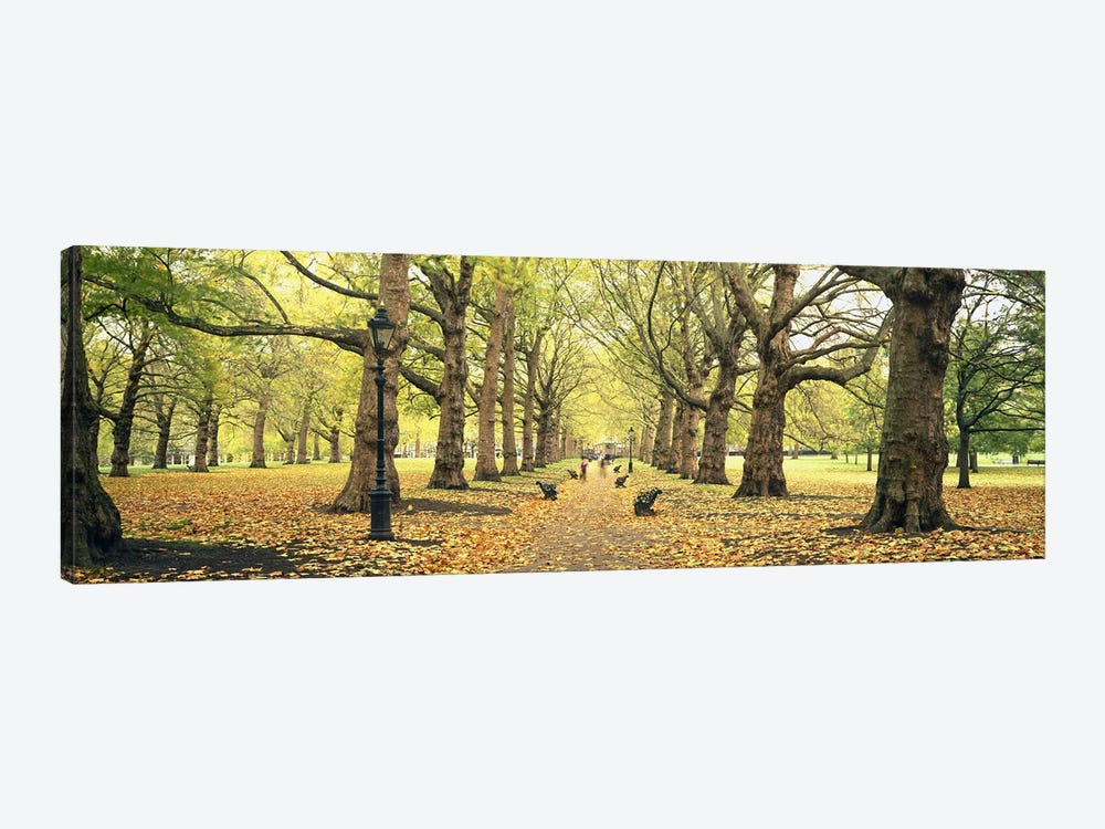 Green Park, City Of Westminster, London, England, United Kingdom by Panoramic Images 1-piece Canvas Art Print