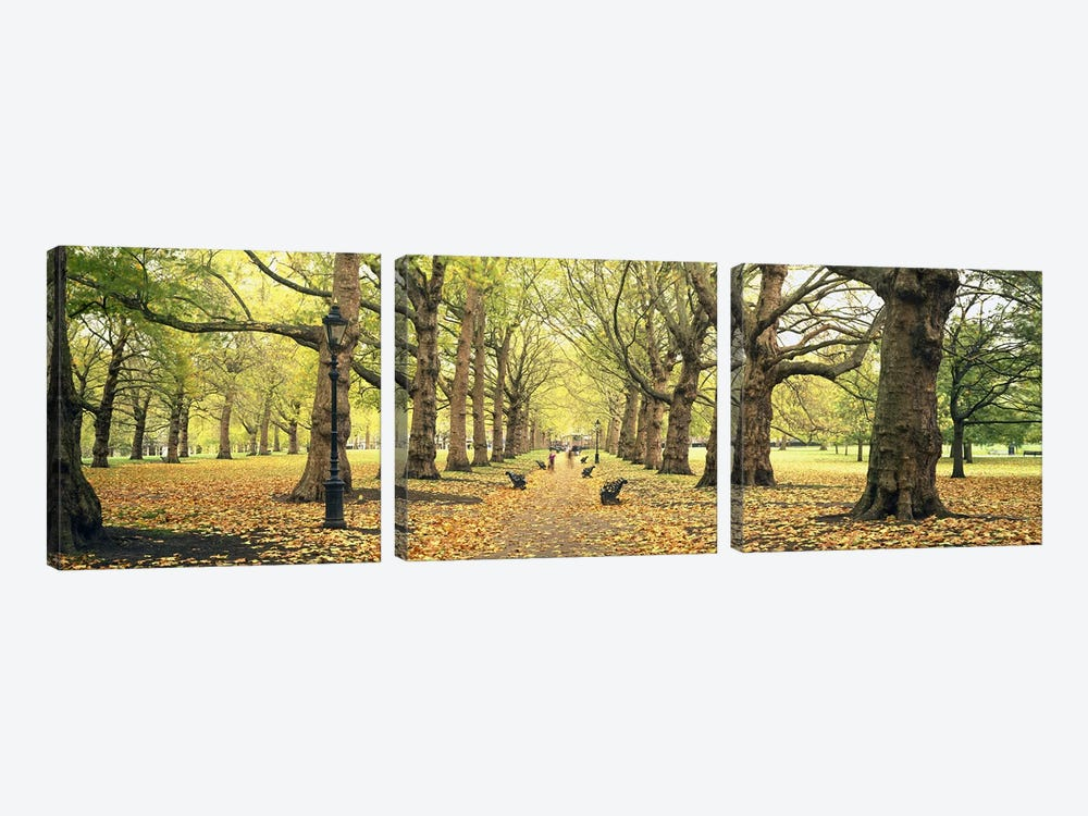 Green Park, City Of Westminster, London, England, United Kingdom by Panoramic Images 3-piece Canvas Art Print