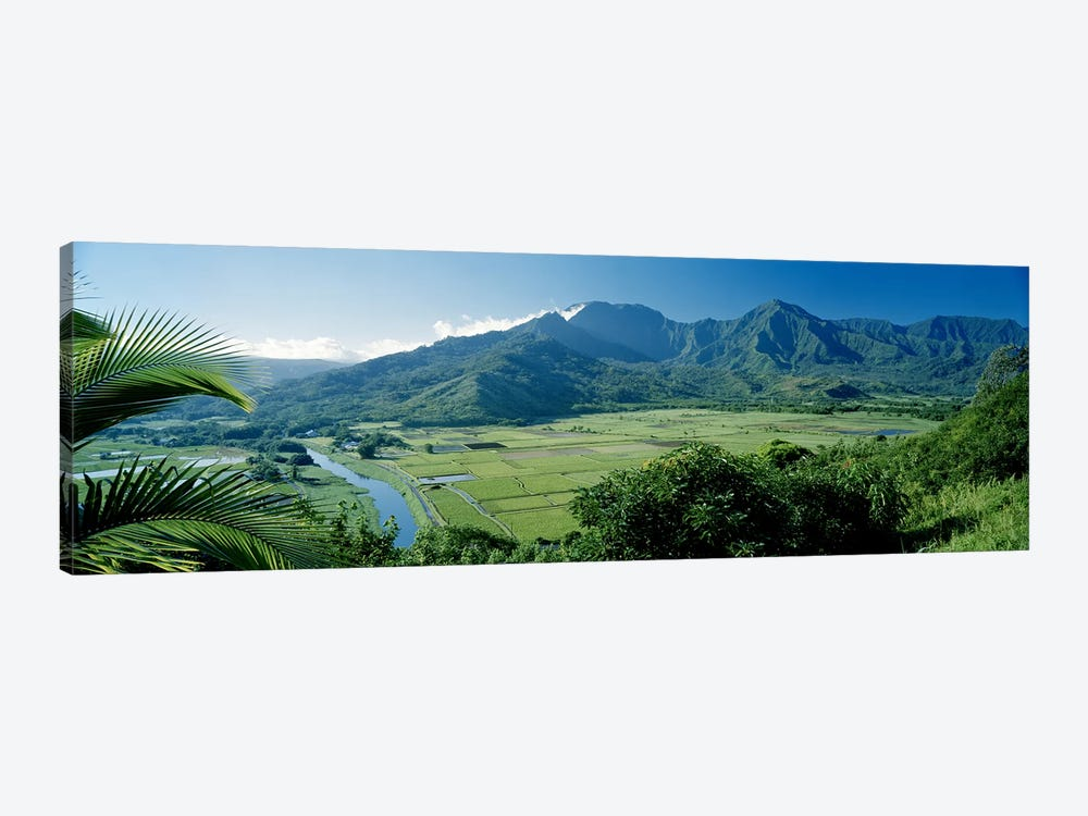 Hanalei Valley As Seen From The Lookout Near Princeville, Kauai, Hawaii, USA by Panoramic Images 1-piece Art Print