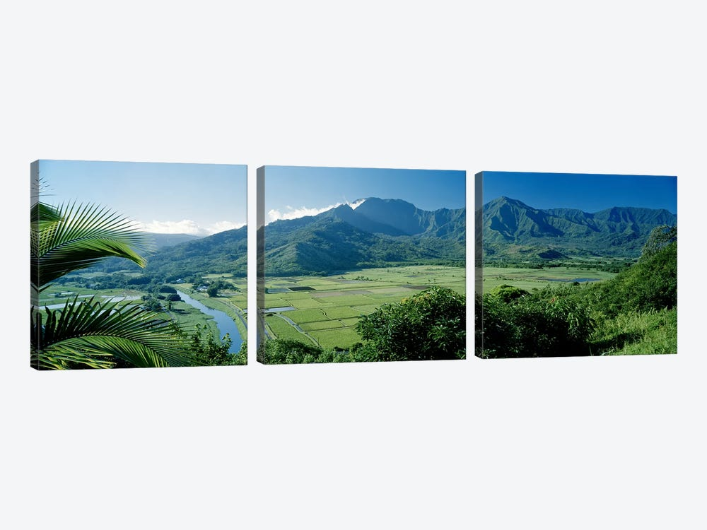 Hanalei Valley As Seen From The Lookout Near Princeville, Kauai, Hawaii, USA by Panoramic Images 3-piece Canvas Print