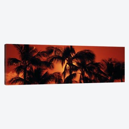 Orange Sunset, Kalapaki Beach, Kauai, Hawai'i, USA Canvas Print #PIM6237} by Panoramic Images Canvas Wall Art