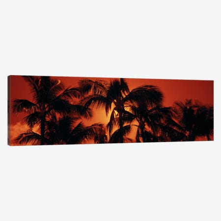 Orange Sunset, Kalapaki Beach, Kauai, Hawai'i, USA Canvas Print #PIM6237} by Panoramic Images Canvas Wall Art
