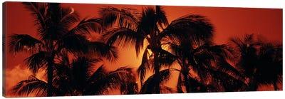 Orange Sunset, Kalapaki Beach, Kauai, Hawai'i, USA Canvas Print #PIM6237