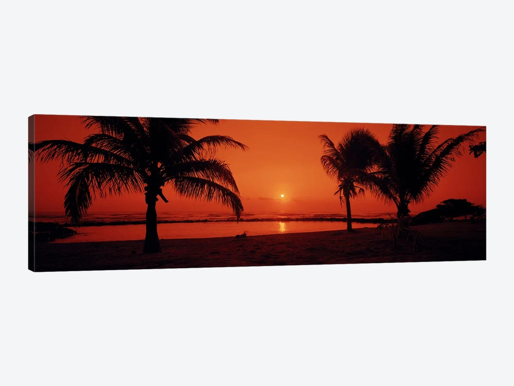 Silhouette of palm trees on the beach at duskLydgate Park, Kauai, Hawaii, USA by Panoramic Images 1-piece Canvas Wall Art