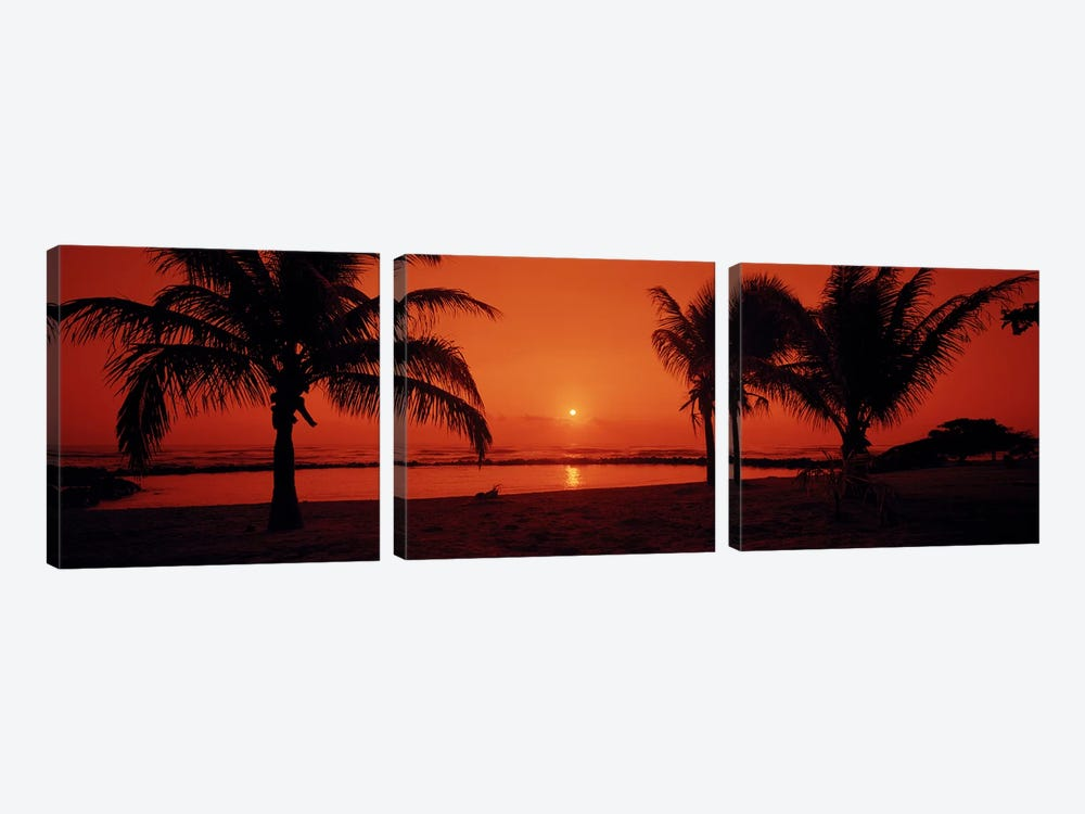 Silhouette of palm trees on the beach at duskLydgate Park, Kauai, Hawaii, USA by Panoramic Images 3-piece Canvas Wall Art
