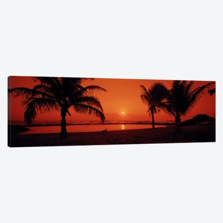 Silhouette of palm trees on the beach at duskLydgate Park, Kauai, Hawaii, USA Canvas Print #PIM6238} by Panoramic Images Art Print