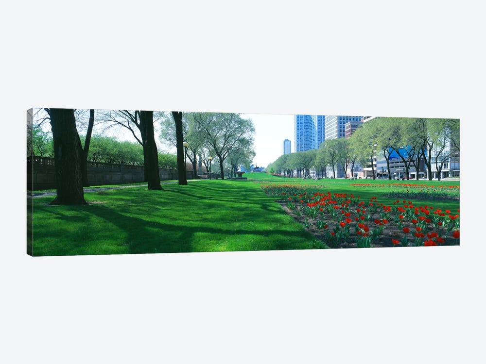 Public Gardens, Loop, Cityscape, Grant Park, Chicago, Illinois, USA 1-piece Canvas Print
