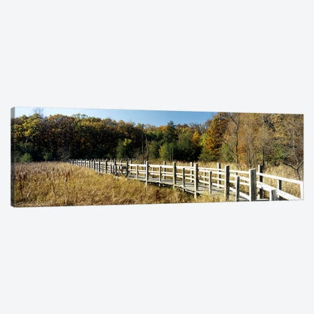 Boardwalk passing through a forestUniversity of Wisconsin Arboretum, Madison, Dane County, Wisconsin, USA Canvas Print #PIM6292} by Panoramic Images Art Print