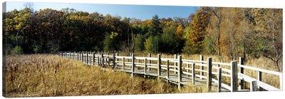 Boardwalk passing through a forestUniversity of Wisconsin Arboretum, Madison, Dane County, Wisconsin, USA Canvas Art Print