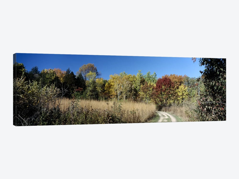 Dirt road passing through a forest, University of Wisconsin Arboretum, Madison, Dane County, Wisconsin, USA by Panoramic Images 1-piece Canvas Wall Art