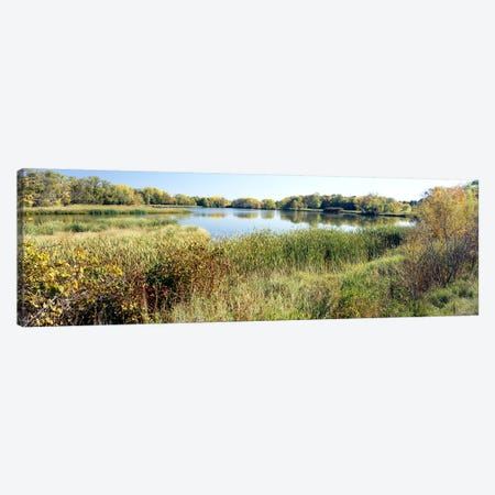 Reflection of trees in water, Odana Hills Golf Course, Madison, Dane County, Wisconsin, USA Canvas Print #PIM6299} by Panoramic Images Art Print