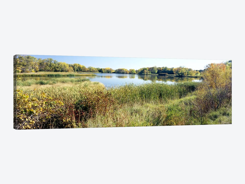 Reflection of trees in water, Odana Hills Golf Course, Madison, Dane County, Wisconsin, USA by Panoramic Images 1-piece Art Print