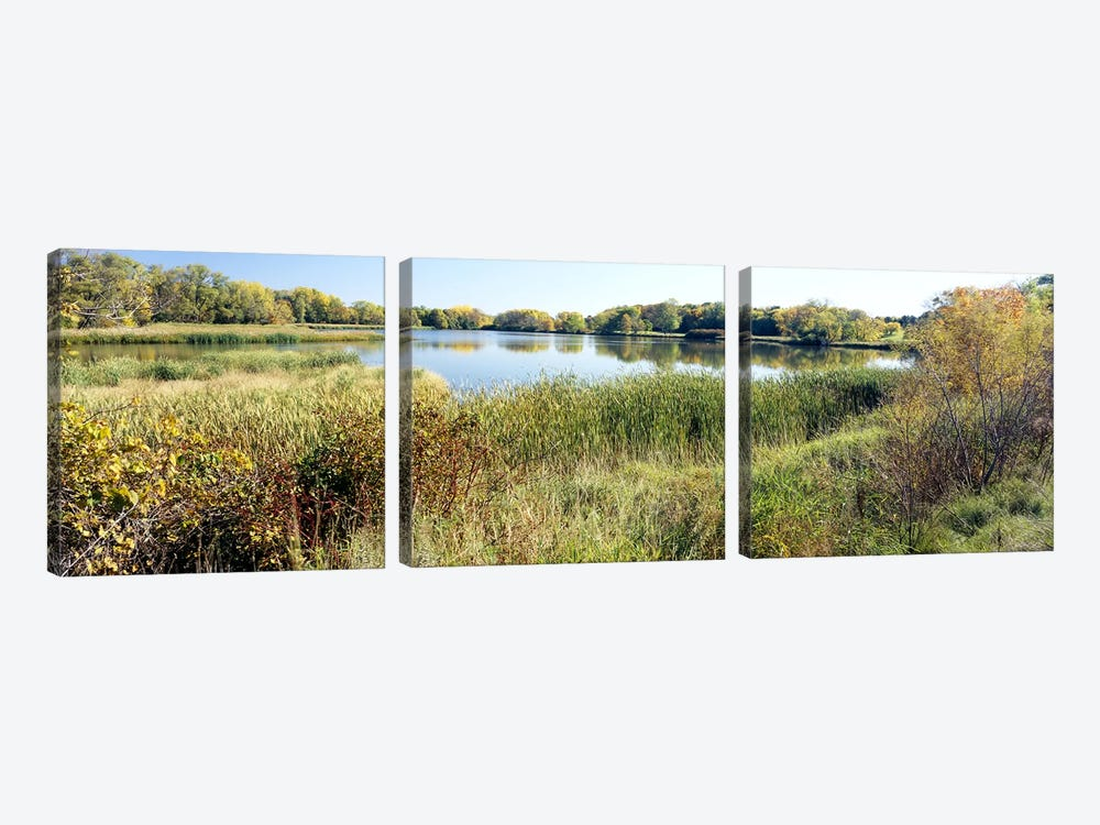 Reflection of trees in water, Odana Hills Golf Course, Madison, Dane County, Wisconsin, USA by Panoramic Images 3-piece Canvas Print