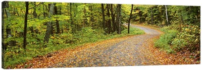 Country Road In An Autumn Landscape, Caledonia County, Vermont, USA Canvas Art Print