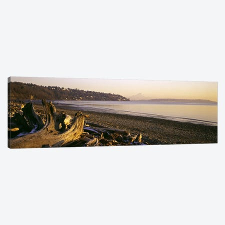 Driftwood on the beach, Discovery Park, Mt Rainier, Seattle, King County, Washington State, USA Canvas Print #PIM6367} by Panoramic Images Canvas Artwork