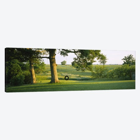 Tire swing on a tree Canvas Print #PIM6383} by Panoramic Images Canvas Print