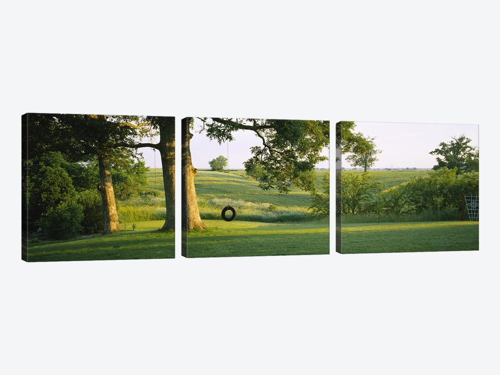 Tire swing on a tree by Panoramic Images 3-piece Canvas Print