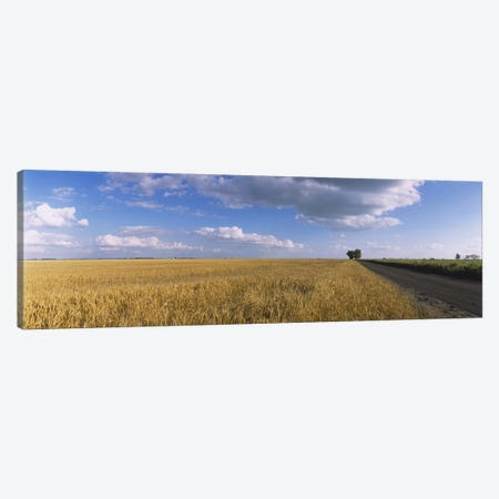 Clouds Over A Field Of Wheat, North Dakota, USA Canvas Print #PIM6384} by Panoramic Images Canvas Art