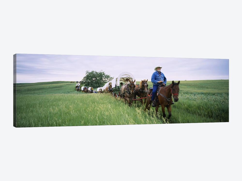 Historical reenactment of covered wagons in a field, North Dakota, USA by Panoramic Images 1-piece Art Print