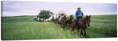 Historical reenactment of covered wagons in a field, North Dakota, USA Canvas Art Print