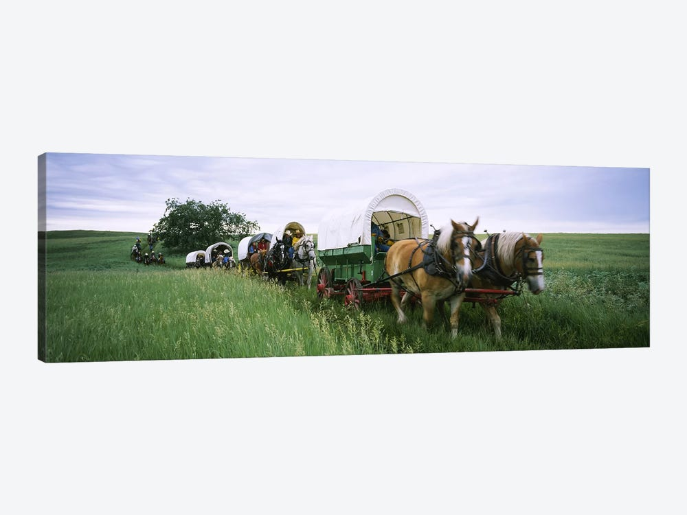 Historical reenactment, Covered wagons in a field, North Dakota, USA 1-piece Canvas Art