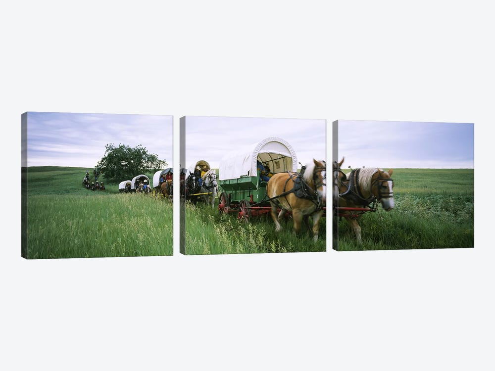 Historical reenactment, Covered wagons in a field, North Dakota, USA by Panoramic Images 3-piece Canvas Wall Art
