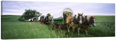 Historical reenactment, Covered wagons in a field, North Dakota, USA Canvas Art Print