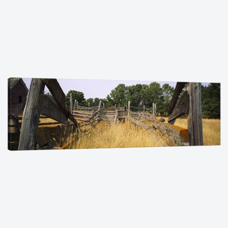Dilapidated Cattle Chute, North Dakota, USA Canvas Print #PIM6387} by Panoramic Images Canvas Art