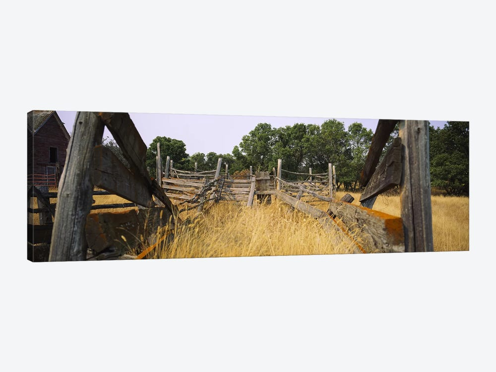 Dilapidated Cattle Chute, North Dakota, USA by Panoramic Images 1-piece Art Print