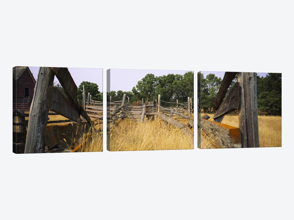 Dilapidated Cattle Chute, North Dakota, USA by Panoramic Images 3-piece Canvas Print