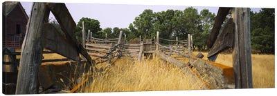 Dilapidated Cattle Chute, North Dakota, USA Canvas Art Print