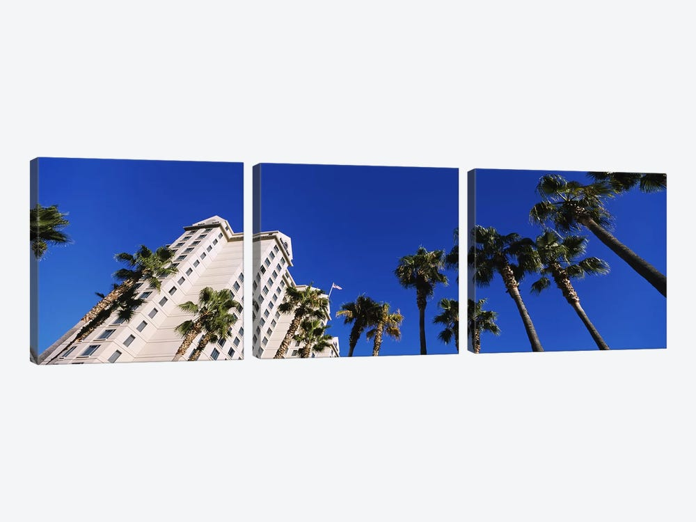 Low-Angle View Of Palm Trees & Fairmont Hotel, San Jose, Santa Clara County, California, USA by Panoramic Images 3-piece Canvas Art Print