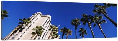 Low-Angle View Of Palm Trees & Fairmont Hotel, San Jose, Santa Clara County, California, USA Canvas Art Print