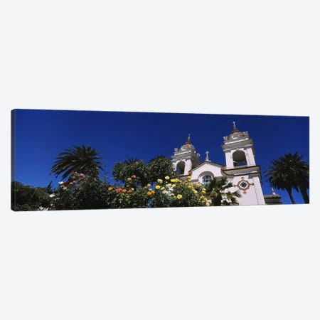 Plants in front of a cathedral, Portuguese Cathedral, San Jose, Silicon Valley, Santa Clara County, California, USA Canvas Print #PIM6415} by Panoramic Images Canvas Wall Art